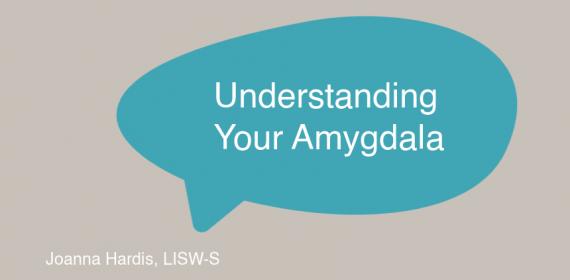 Understanding Your Amygdala